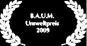 2009_BAUM